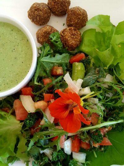 Organic Food Retreats