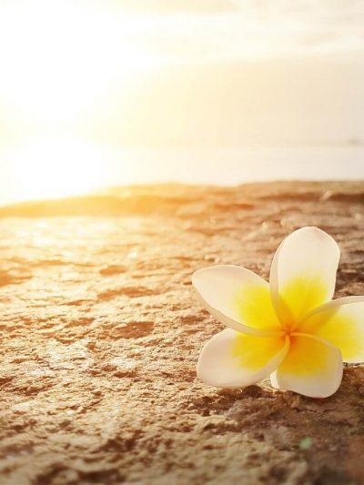 Spiritual Philosophies Retreats